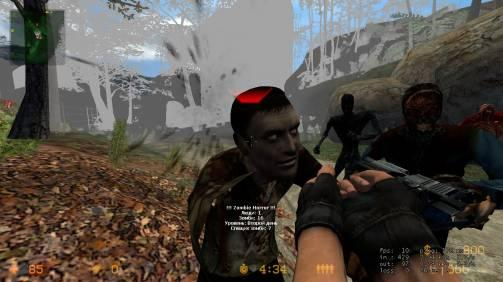Counter-Strike Source День Про (Classic+realism+GunGame+Zombie) v34 build 4044 (2010)
